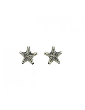Boucles d'oreilles argent, Puce en étoile et oxyde de zirconium.